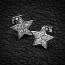 Silver Stars Studs