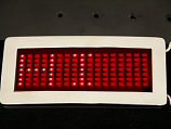 LED Scrolling Message Buckle in Chrome ON SPECIAL!