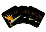 Coasters Set of 4 - Bird of Paradise