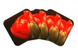 Coasters Set of 4 - Red Tulip